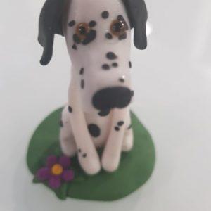 Dalmatian – Good Dog