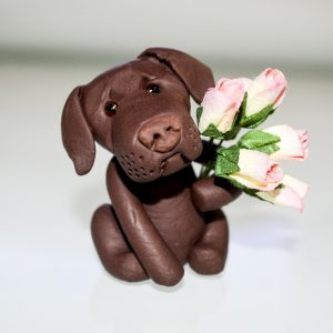 Chocolate Labrador – With Love