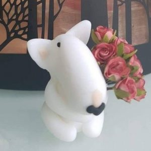 English Bull Terrier – With Love