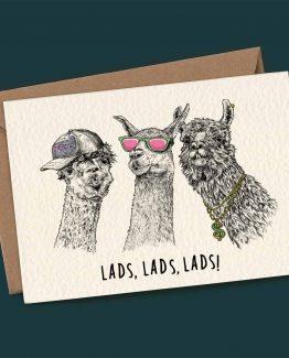 Lads, Lads, Lads – Llama Greeting Card